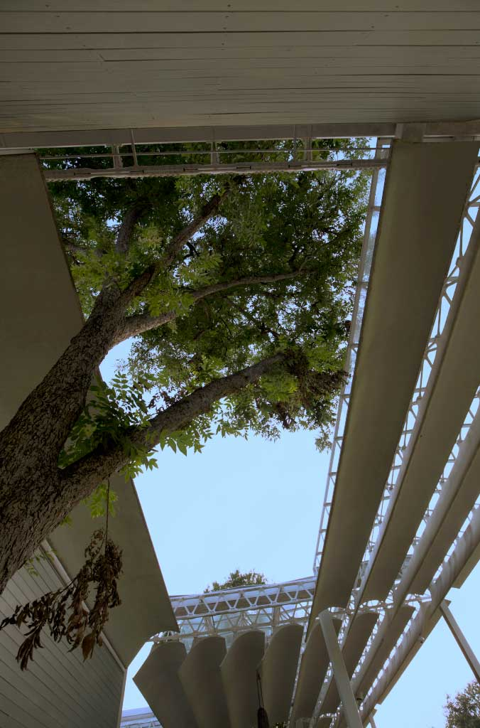Exterior Perspective Menil Collection