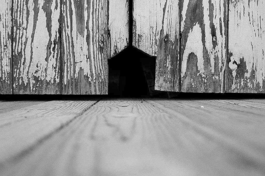 A Door in a Door